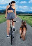 biciklis-kutyás termékek