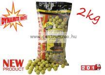 Dynamite Baits bojli Scopex Attack Shelf Life - 20mm - 2kg - DY627