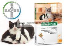 BAYER ADVANTAGE SPOT ON 0,4ml  bolha elleni csepp 4kg alatti cicáknak, nyulaknak  1db pipetta