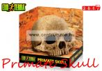 Exo-Terra dekor Primate Skull - Samu koponya   PT2855
