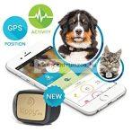 Kippy Vita® BLACK GUARDIAN GPS - KISÁLLAT, KUTYA, MACSKA, GYERMEK, AUTO NYOMKÖVETŐ (új)