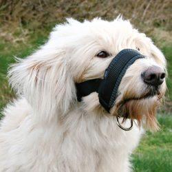 Trixie Maulschlaufe szájszíj fekete - kényelmes - XL TRX19282