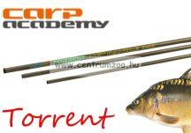 MERÍTŐNYÉL Carp Academy Torrent merítőnyél 340cm (1672-340)