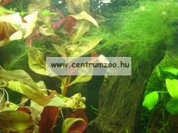 """Sera Phosvec 250ml """"az alga mentes vízért"""""""