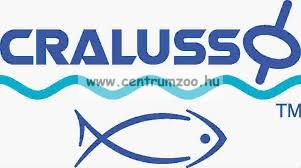 CRALUSSO ÚSZÓ SENSITIVE úszó  9g (60917-009)