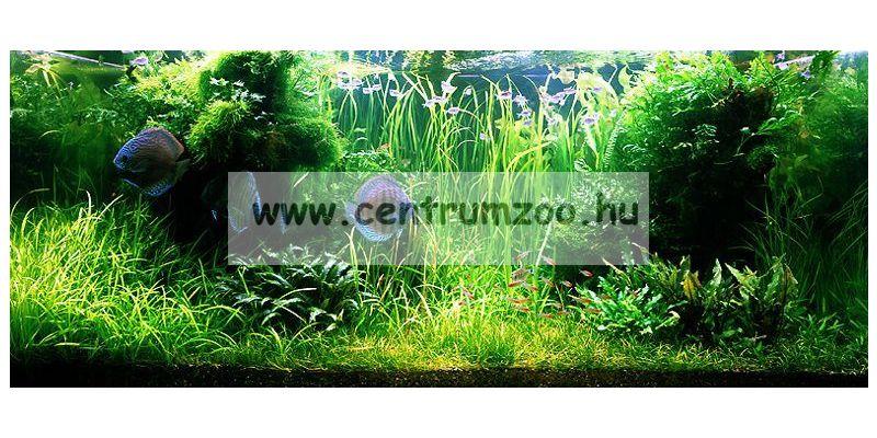 Sera Florena növénytáp 100ml (3240)