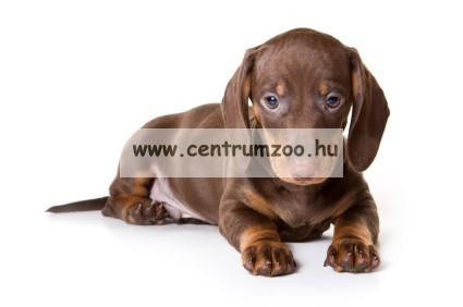 Camon IN&OUT Aluminium     Small Premium alumínium kutya ajtó AX010/SM