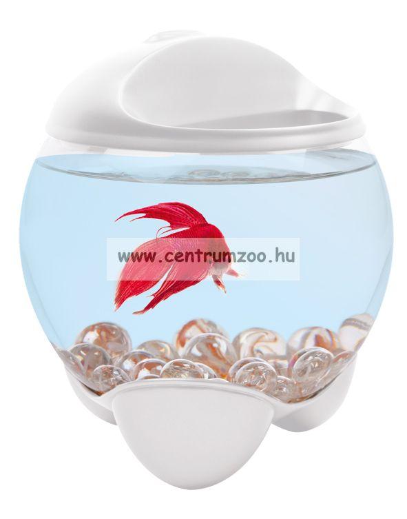 Tetra Betta Bubble Prémium fehér akvárium sziámi harcoshalnak