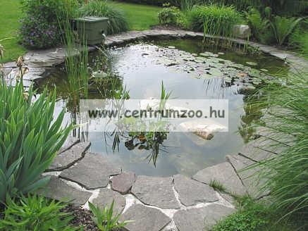 Tetra Pond AlgoStop 10 kapszula, 3m3 tóhoz (176768)