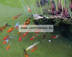 Tetra Pond AquaSafe vízkezelő 250ml, 5m3 tóhoz (143807)