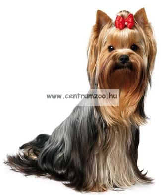 """Camon Parure cuccioli """"Puppy"""" kutyahám + póráz több színben (DC065/A)"""