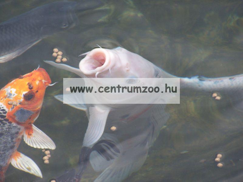 JBL Pond Coloron sticks 1liter tavi haltáp