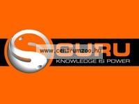 GURU Large Hybrid Inline feeder kosár 55g (GHF55I)