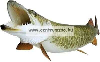 Nevis Snatch 2,70m 15-45gr (1820-270) pergető bot