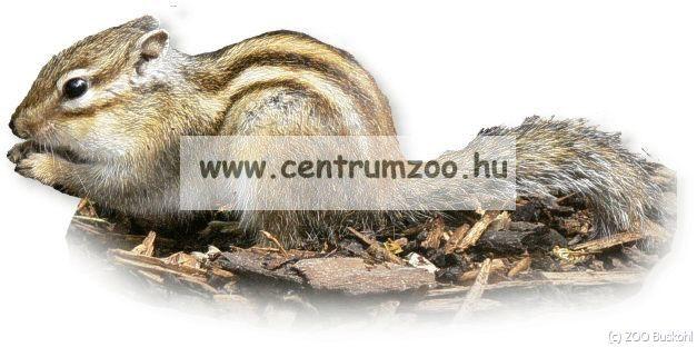 Ferplast Eleség tartó csipesz (PA4751)