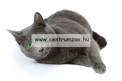 Camon Clean House cica tál alátét (B048/1)