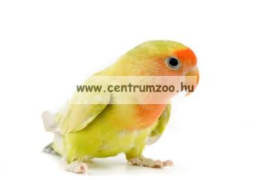 Ferplast madár hinta 14*9,5cm  (PA4058)
