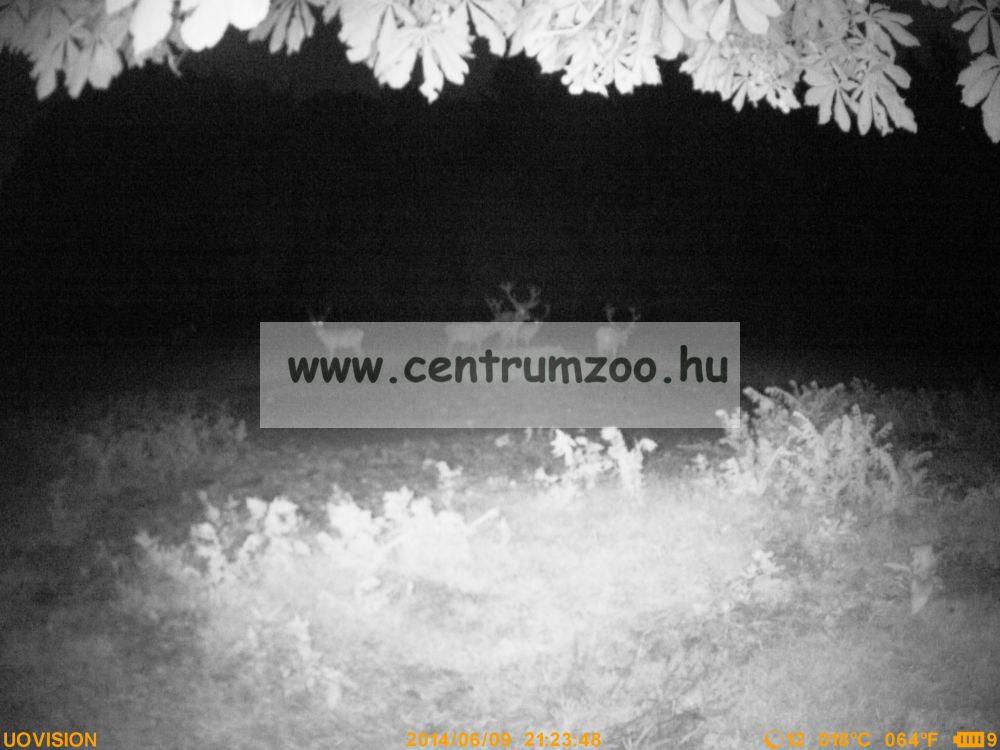 UOVision UV575 HD nagylátószögű vadkamera