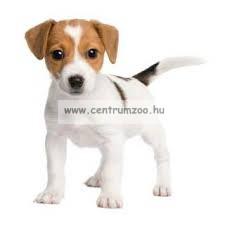 Ferplast puha latex játék kisebb és közepes kutyáknak 5523