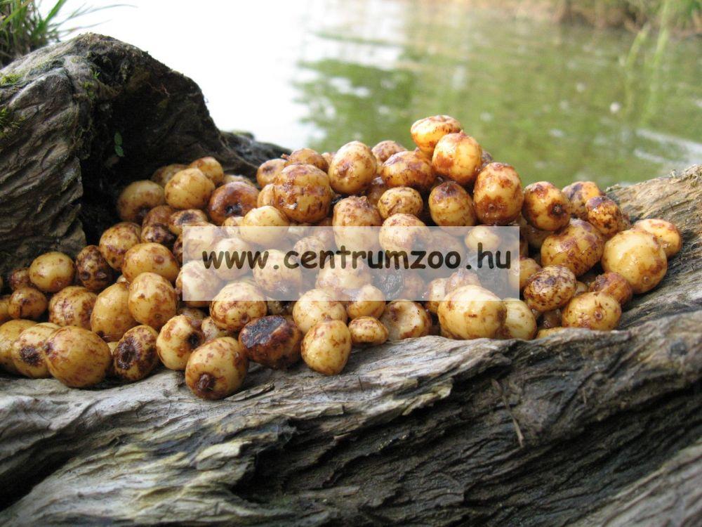 Tigrismogyoró TIGERNUTS (Chufa)  1kg  2016NEW