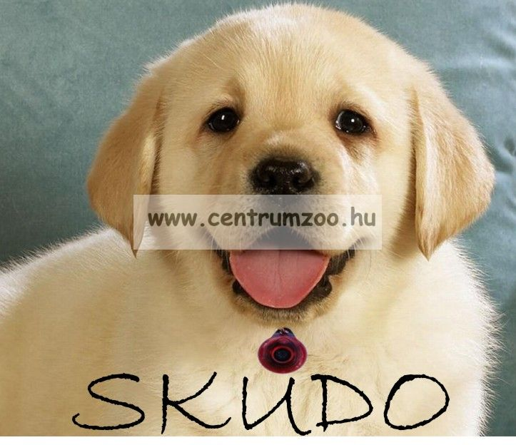 SKUDO PET DOG KULLANCS ÉS BOLHARIASZTÓ (TREND)