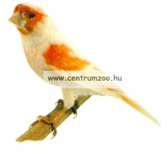 Ferplast madár hinta 13,8*15,6cm  (PA4084)