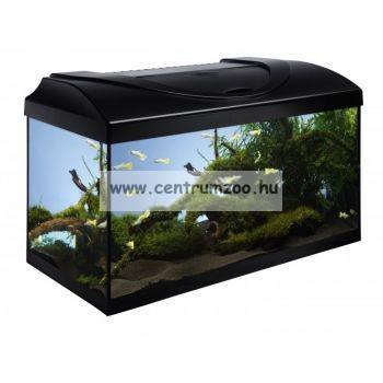 Diversa 60 - üveg akvárium 54 liter felszerelés nélkül
