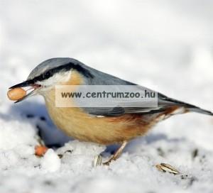 Ferplast Natura Outside Feeder F9 madáretető