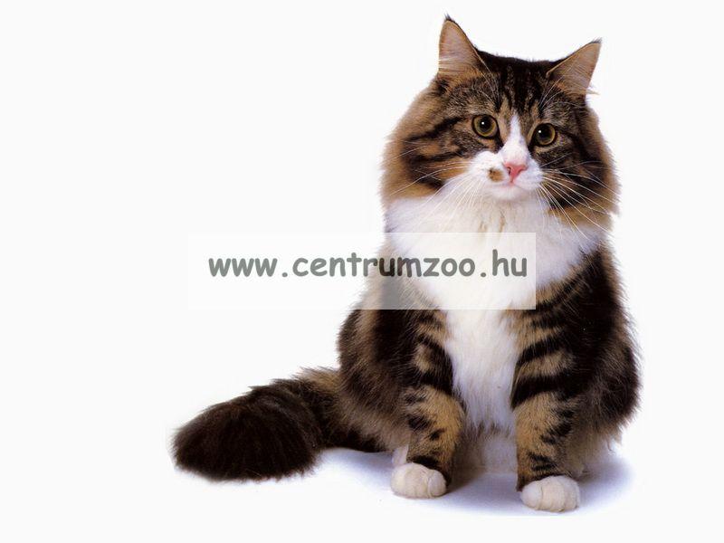 Ferplast Cat Hop kaparófa, játék, fekhely (PA4018)