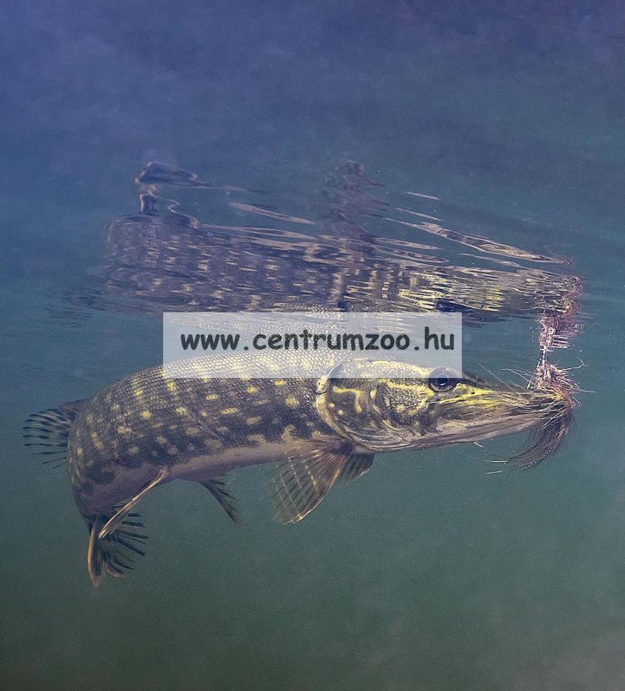 Nevis Snatch 3m 20-55gr (1821-300) pergető bot