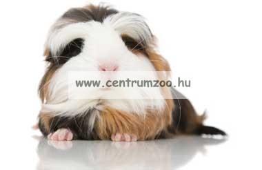 Ferplast Forbice Professional rágcsáló szőrzetvágó olló (PA4940)