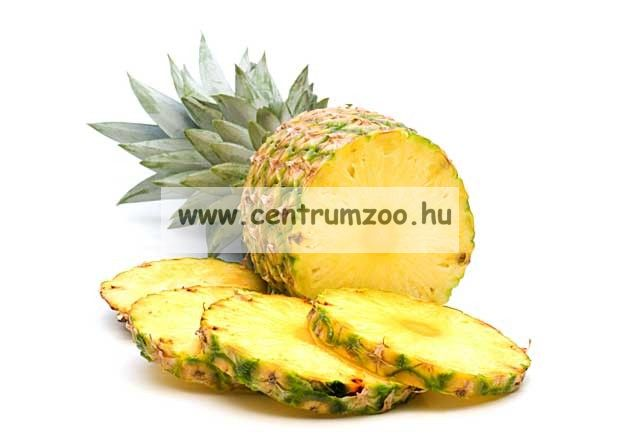 Dynamite Baits Pineapple Plus Pop-Up bojli (DY366 367)