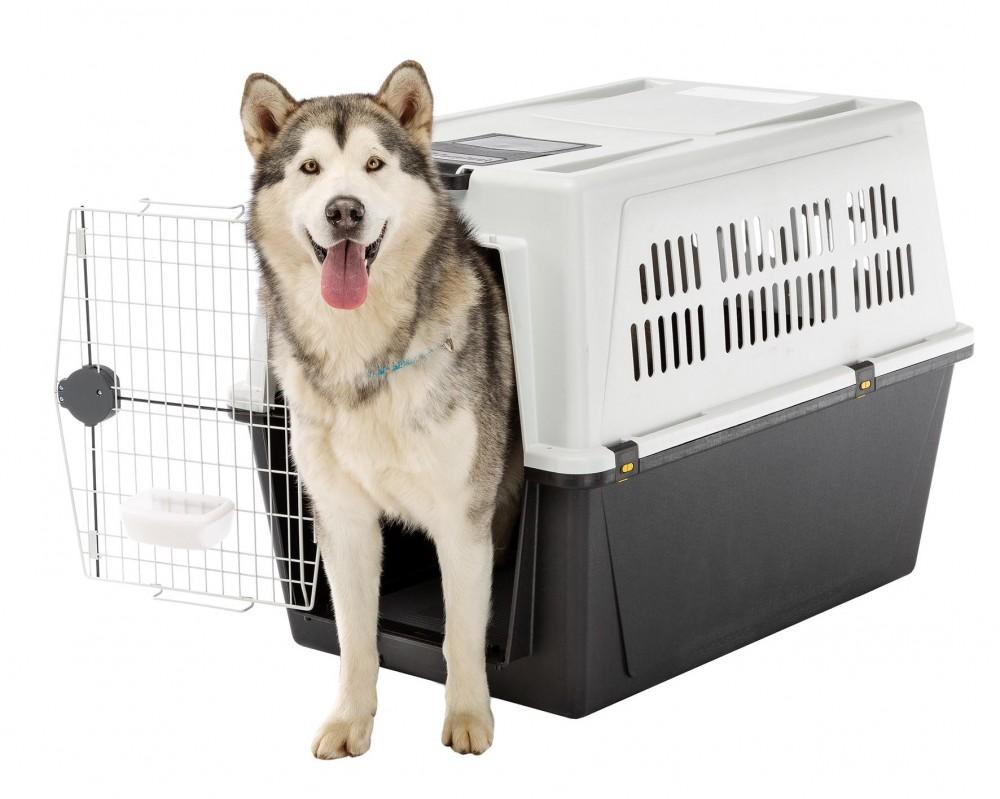 Ferplast Atlas 70 Professional masszív kutyabox (repülőre is)