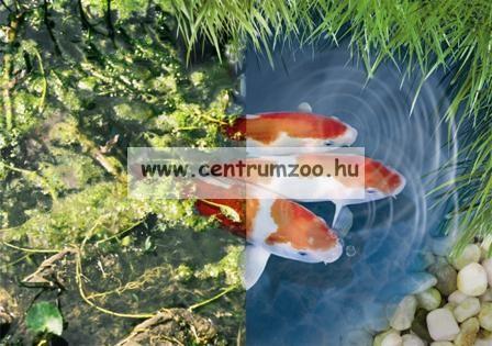 Tetra Pond AlgoFin algaölő  250ml, 5m3 tóhoz
