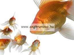 Bio Lio Gammarus (bolharák) 120ml