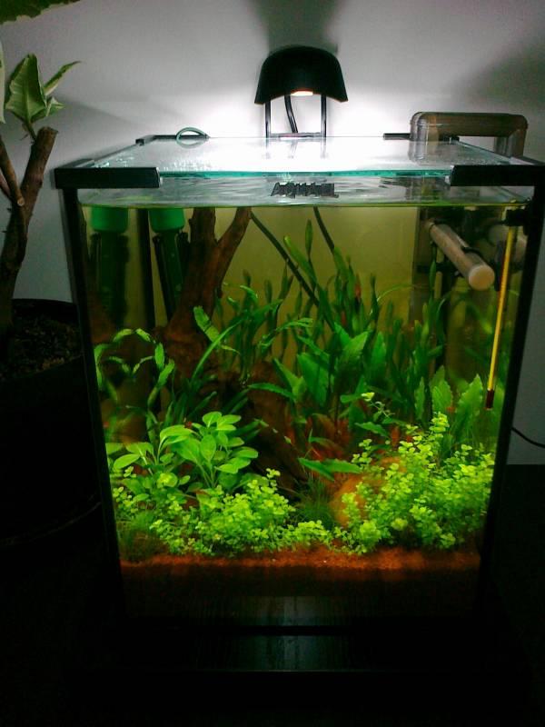 Aquael Nano akvárium komplett szett 30liter