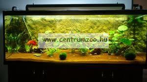 AquaNor BigRock 3D akvárium, terrárium háttér 60*30 méretben