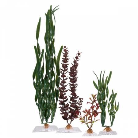 műnövények, decorációk