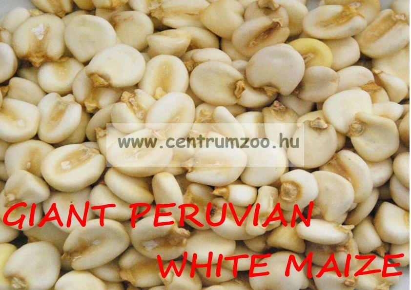 GIANT WHITE CORN FROM CUSCO perui mega fehér kukorica 5kg - vákum csomagolt