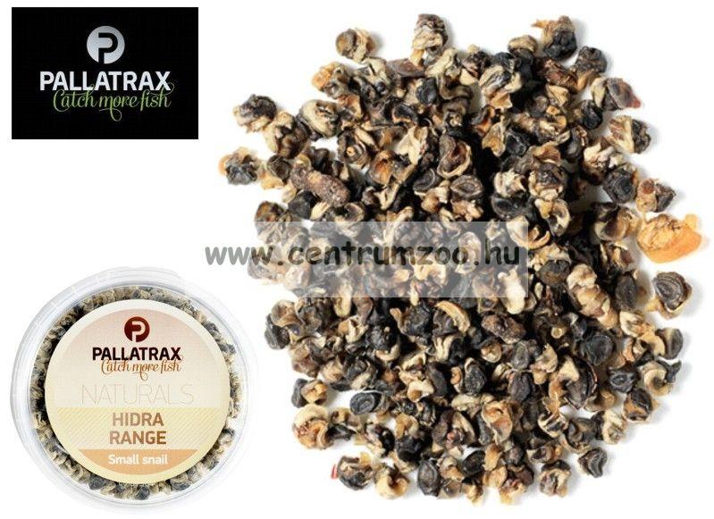 Pallatrax Hidra Small Snail aromás barna csiga (1001)