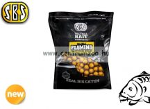 SBS Soluble Flumino Ready-Made Boilies 20mm- Squid & Octopus tintahal, polip 1kg (13243)
