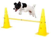 Kerbl Agility Jump - ugrószett slalom egyben- kiképző eszköz (81994)