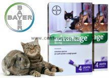 BAYER ADVANTAGE SPOT ON 0,4ml  bolha elleni csepp 4kg feletti cicáknak, nyulaknak  1db pipetta