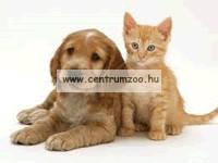 Ferplast Trolley Blue kerekes szállító kocsi és hátizsák (85740099)