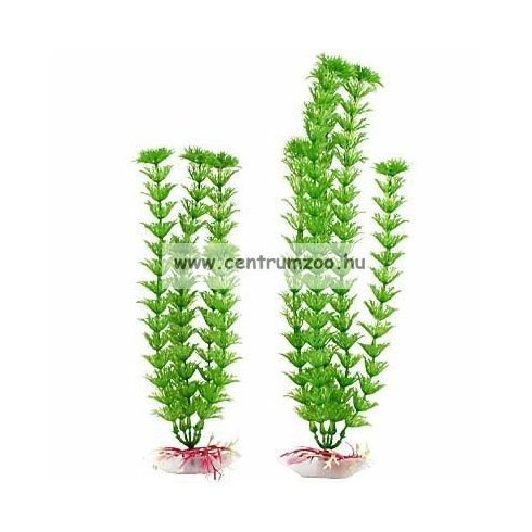 """TETRA Dekoart Plantastics Ambulia műnövény 2-es """"M"""" 23cm"""