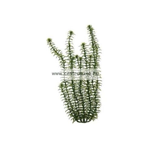 "TETRA Dekoart Plantastics Anacharis (Wasserpest) műnövény 3-as ""L"" 30cm"